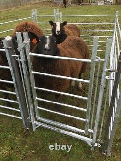 New Hot Dip Galvanised Sheep Hurdle Pen And Gate Set Up Fully Welded